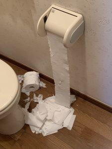 トイレでの惨劇