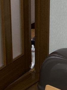 ドアを開ける福先生その1